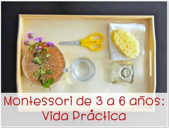 Montessori de 3 a 6 años